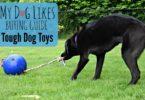 MyDogLikes dives into the toughest dog toys on the market.
