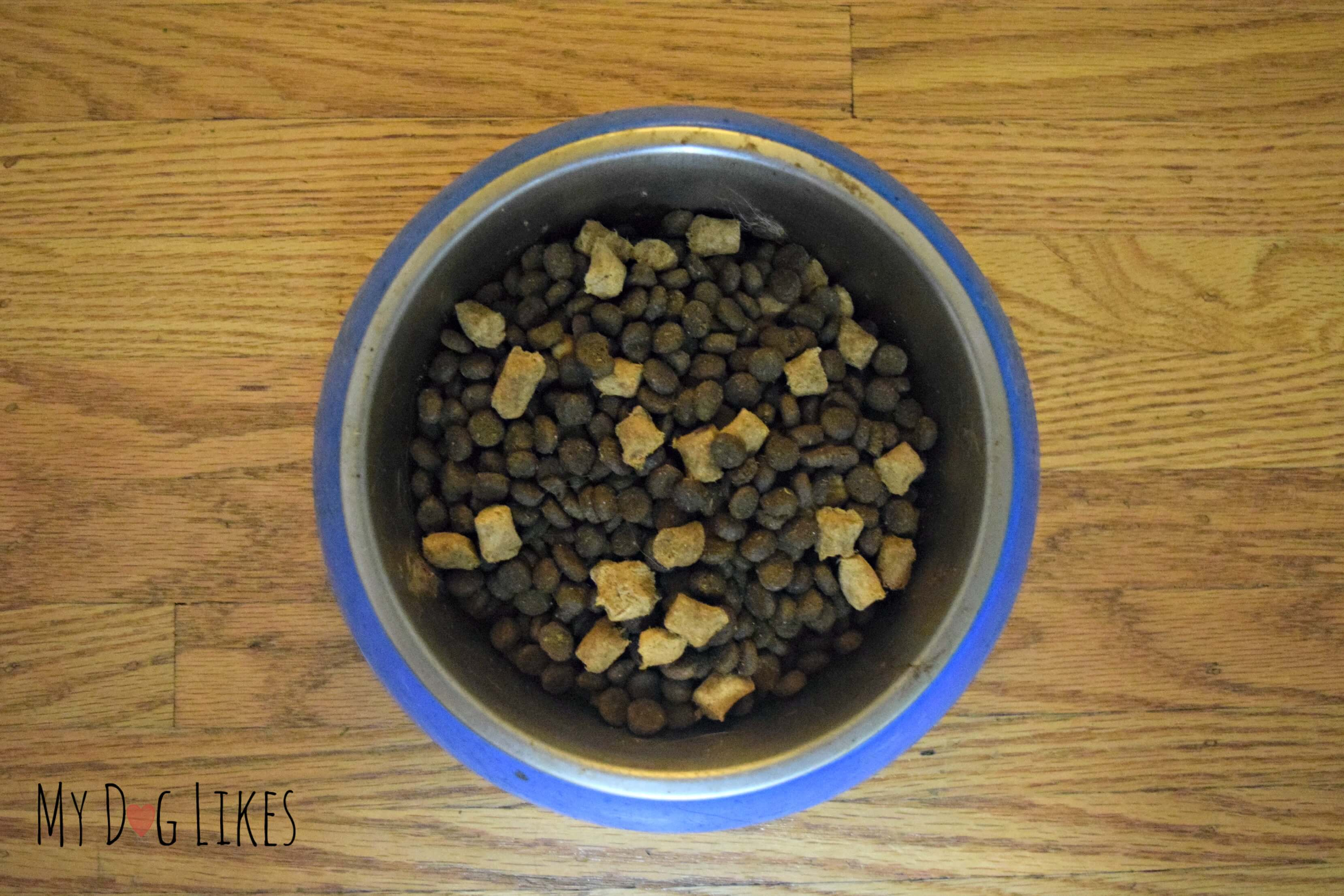 Instinct Raw Boost Review This Is No Ordinary Dog Kibble
