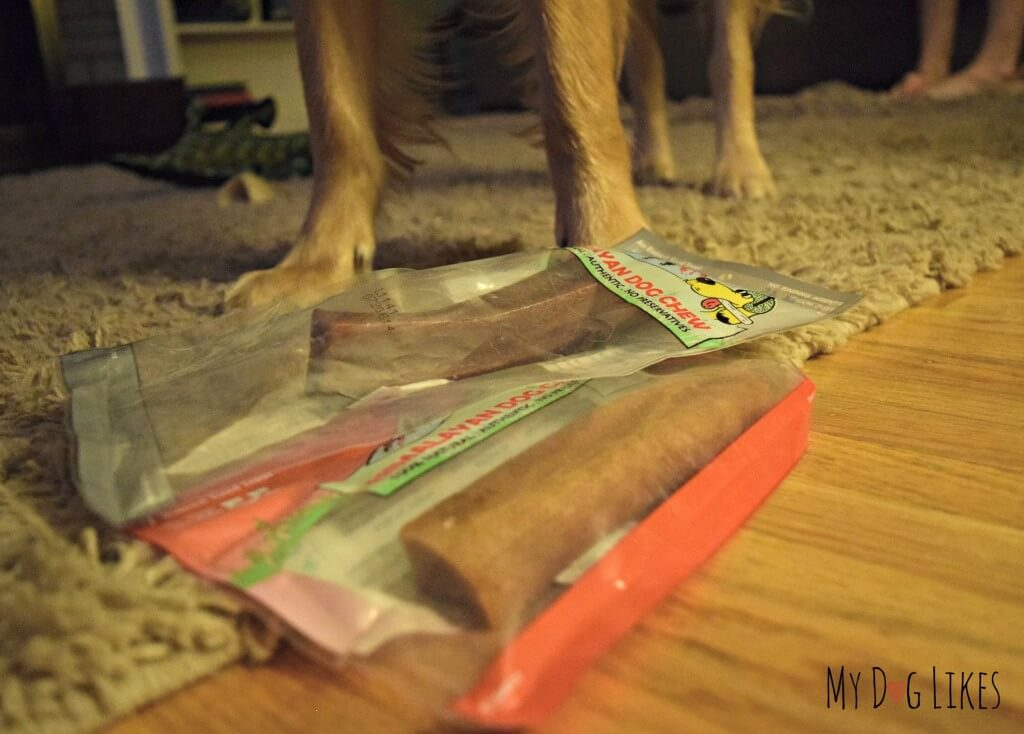 Our Samples of Himalayan Dog Chews