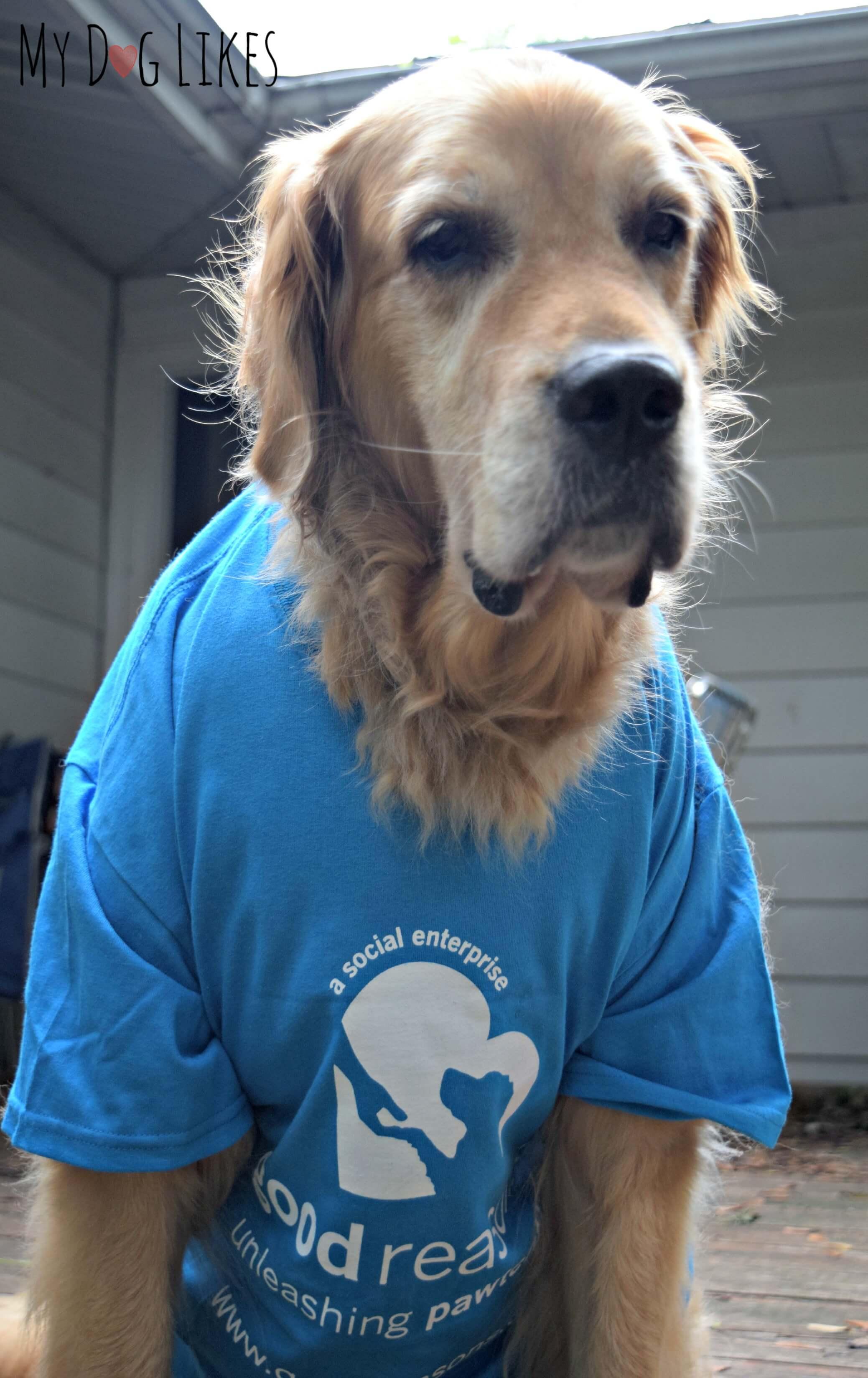Big Kev Dog Shirt