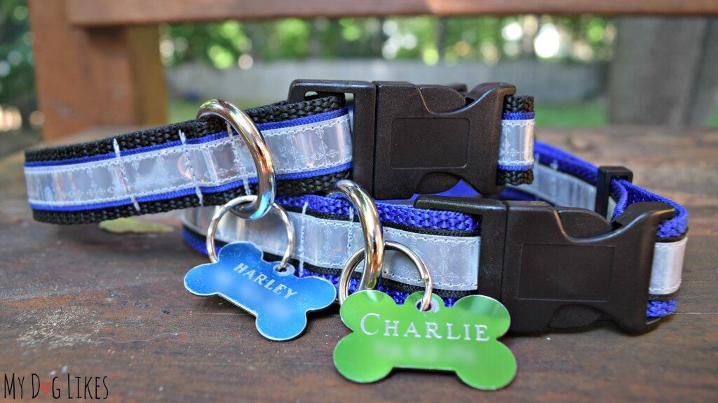 Our Illumidog Reflective SOLAS Dog Collars
