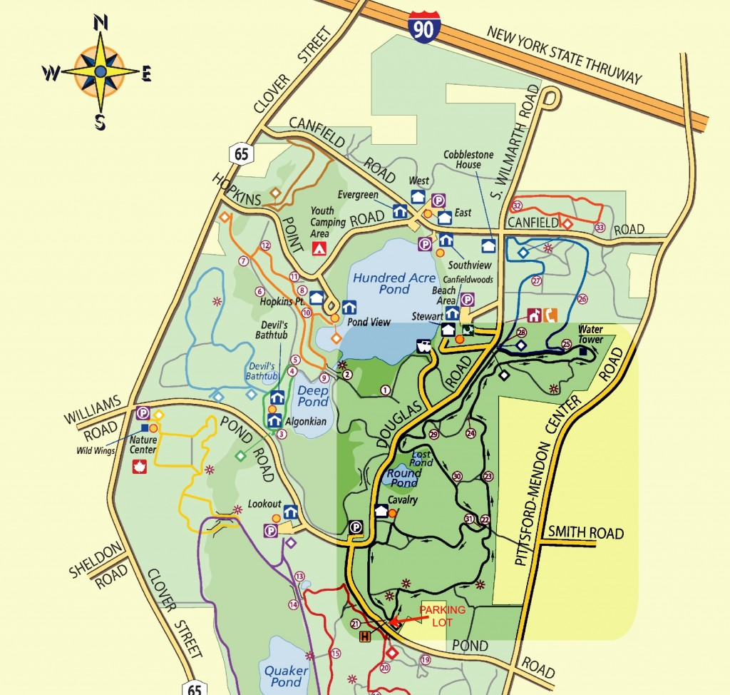 The East Esker Trail at Mendon Ponds Park near Rochester, NY
