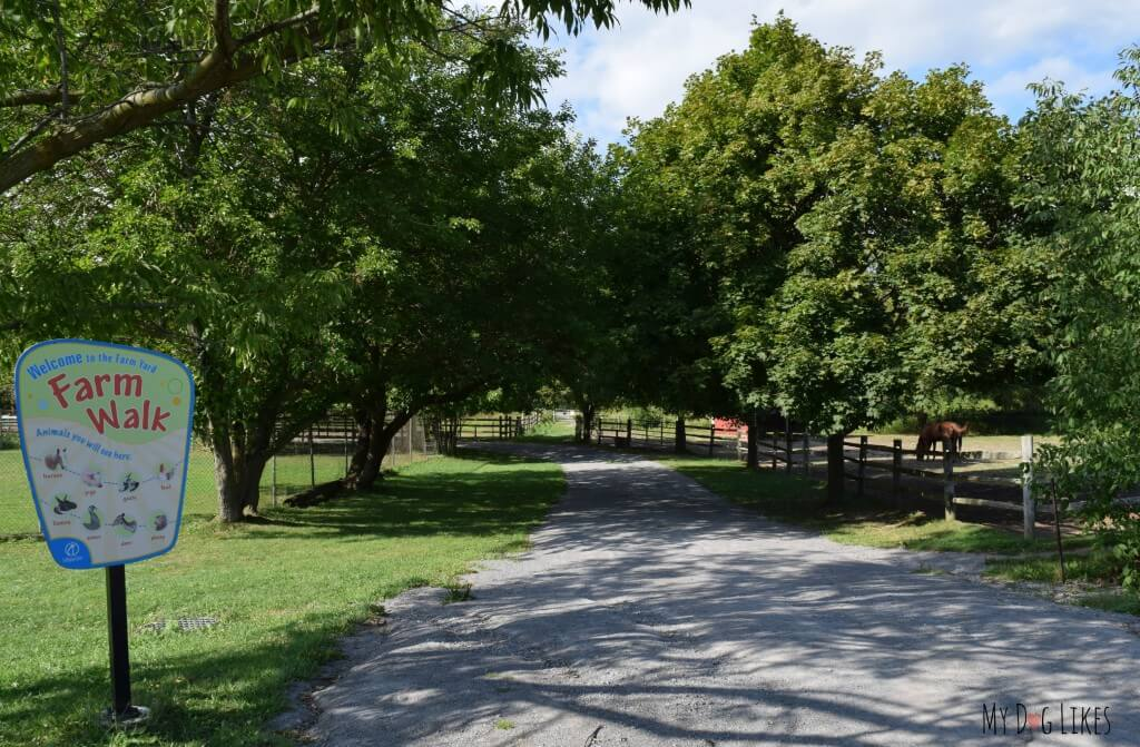 The entrance to the Farm Walk at Lollypop Farm