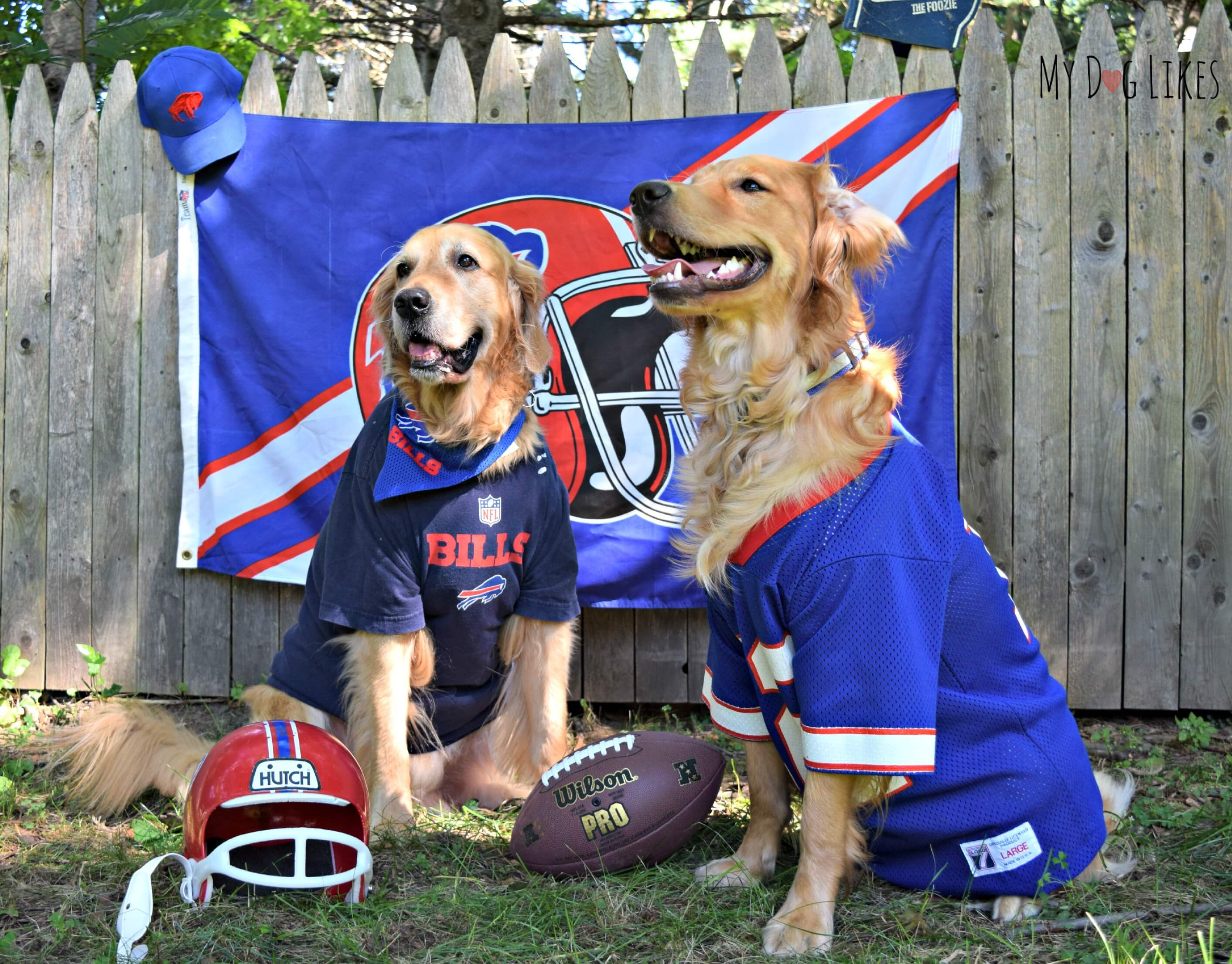 ... Buffalo Bills Mesh Dog Jersey Are you Ready for Some Football ... 705592ad1