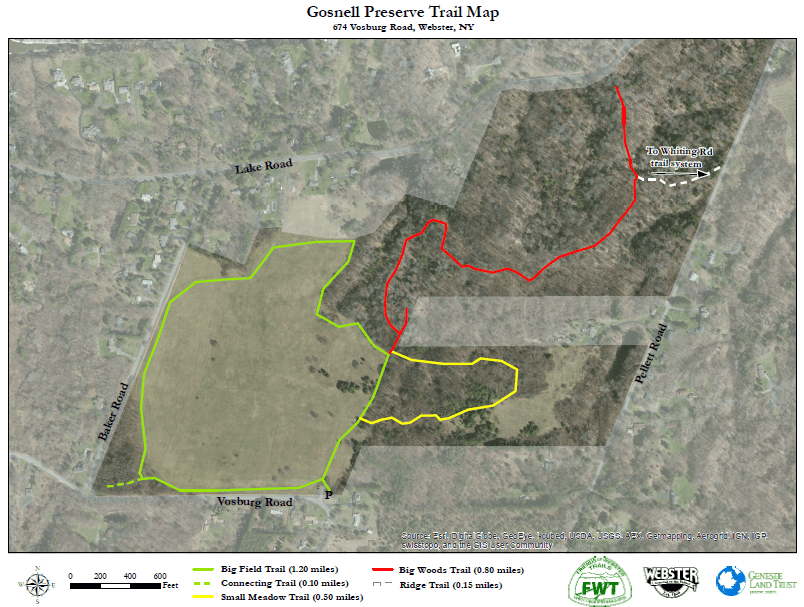 The trail map for Gosnell Big Woods Preserve