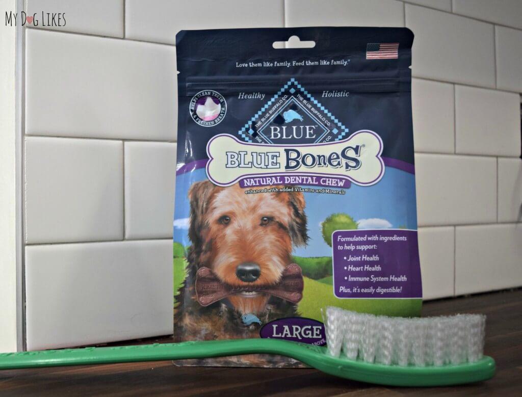Blue Bones natural dental chews help to clean dogs teeth and freshen breath