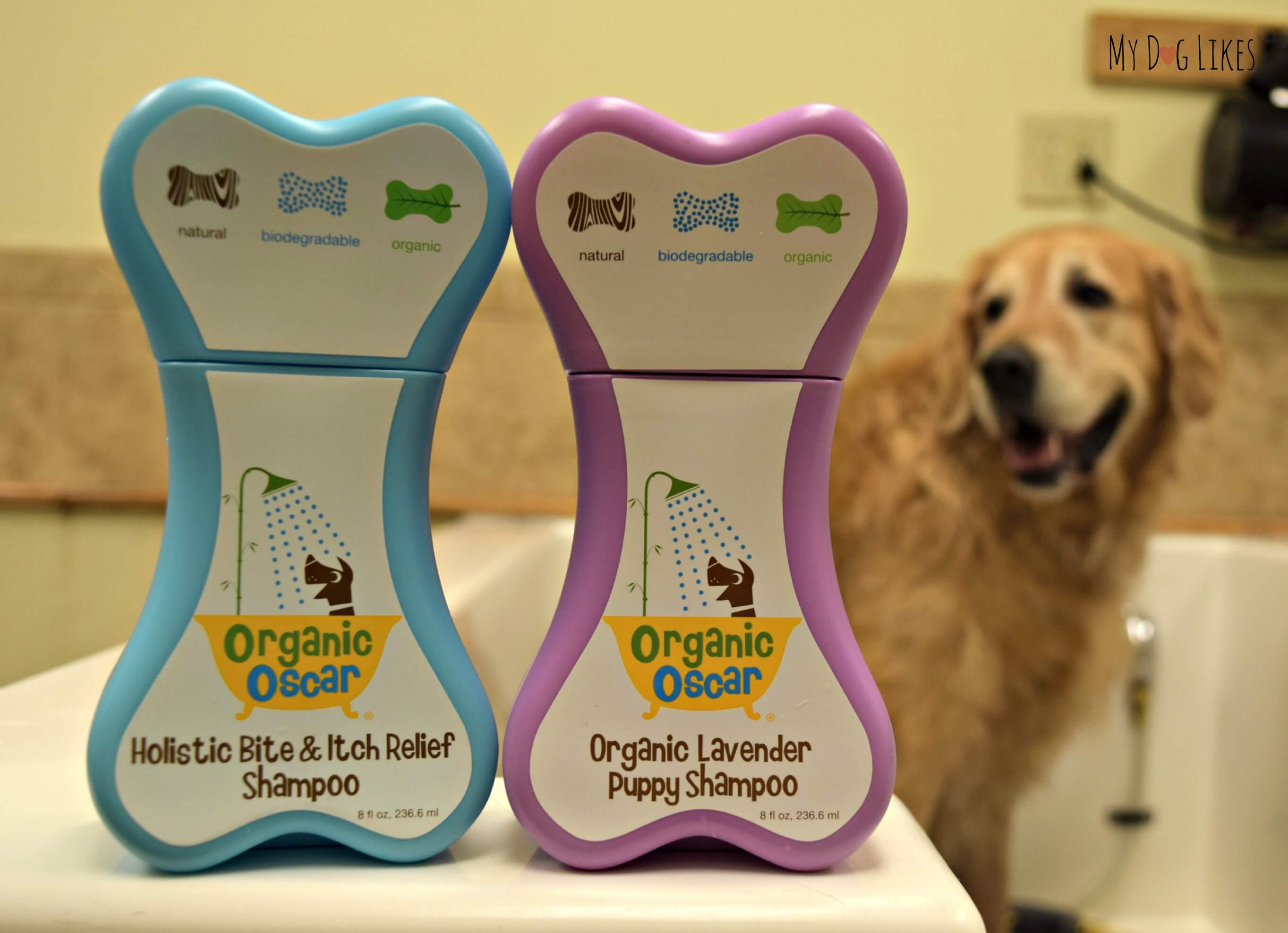 How to bathe a dog a step by step guide mydoglikes reviews organic oscar dog shampoos solutioingenieria Choice Image