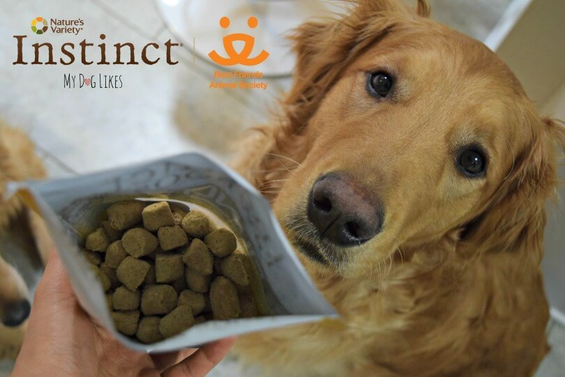 MyDogLikes is helping to spread the word about Nature's Variety and Best Friends Animal Society's Long Live Pets Campaign