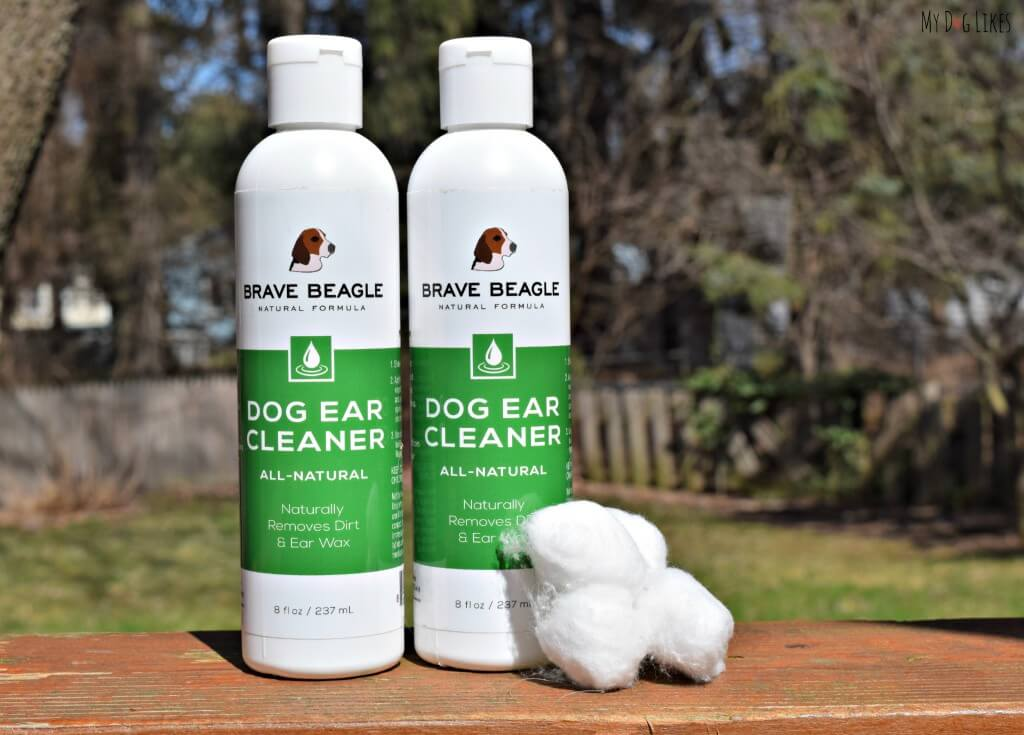 Brave Beagle solution and cotton balls are all you need to clean your dogs ears