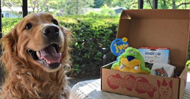 Check out our Pooch Party Packs review to see how they stack up in the dog subscription box market