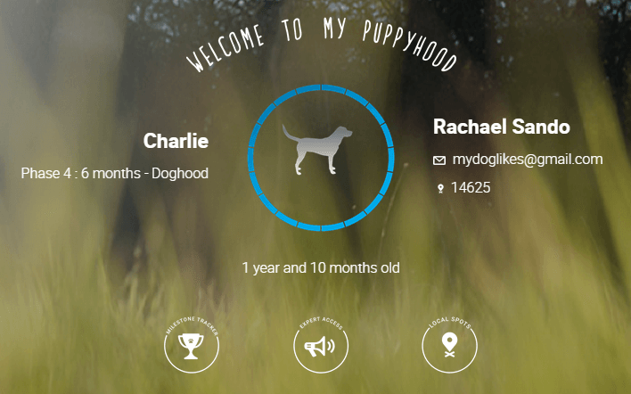 Charlies profile page on puppyhood.com