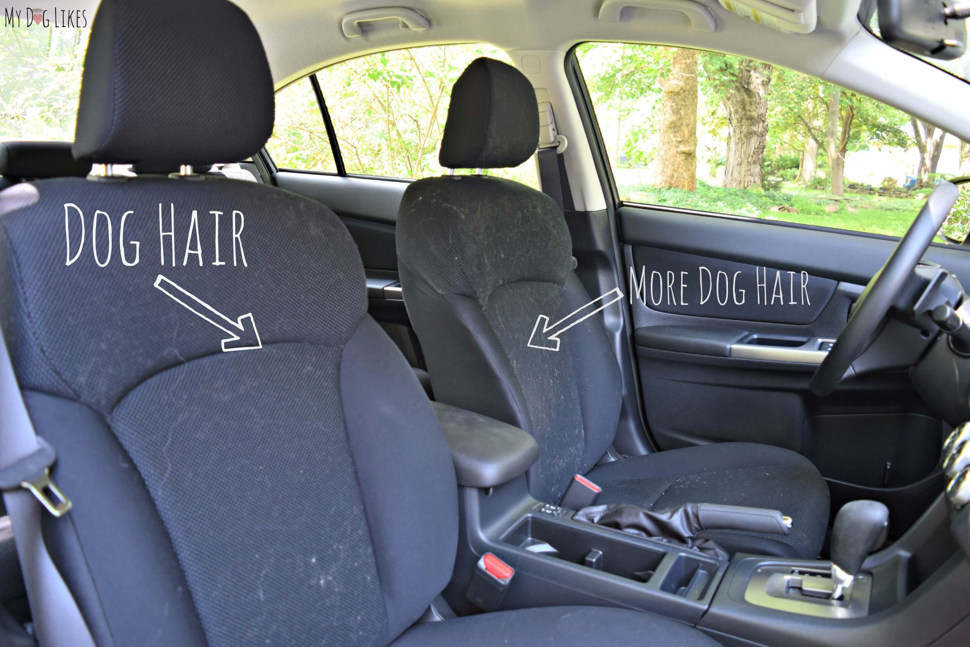 Car Seat Covers Dogs Uk Velcromag