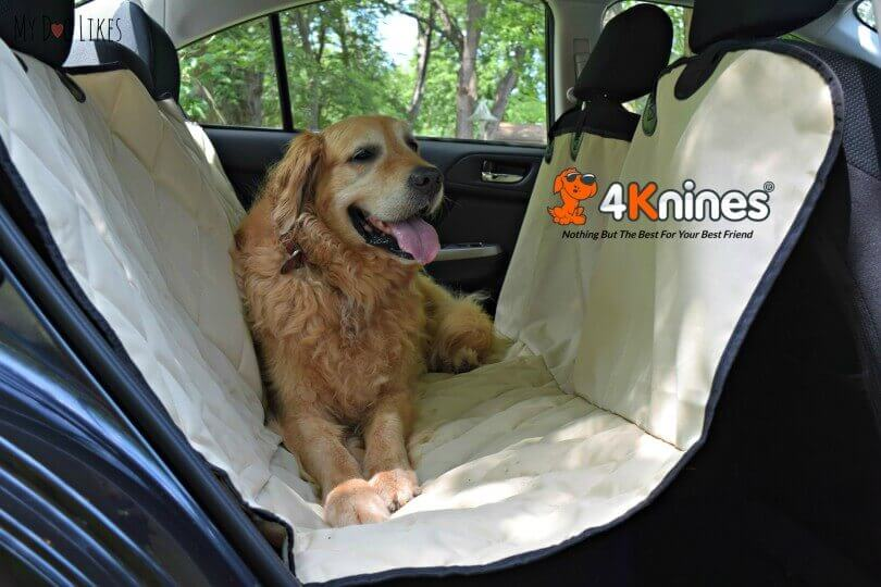 harley enjoying his 4knines dog car seat hammock 4knines seat cover review   protect your investment  rh   mydoglikes