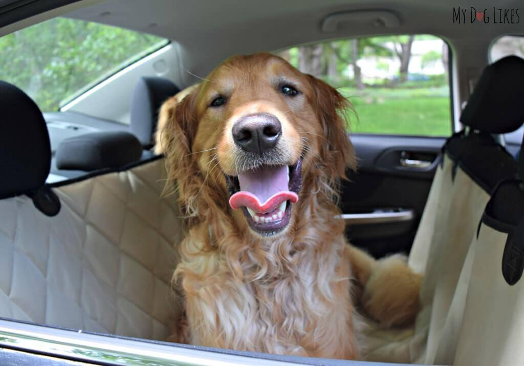 4Knines car seat covers are not only comfortable for the dogs, but they look great as well!