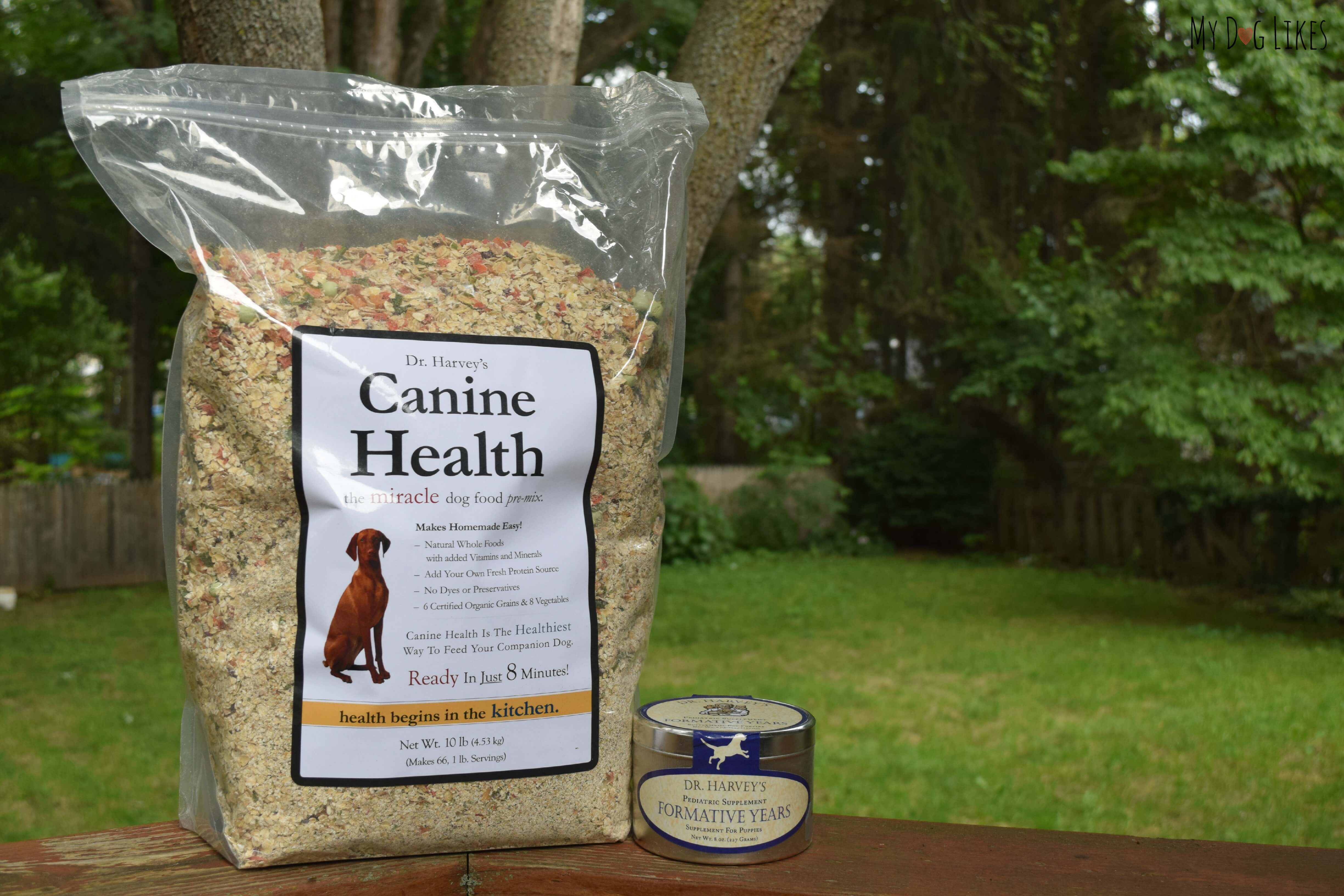 Getting A Healthy Start Choosing The Best Puppy Food For