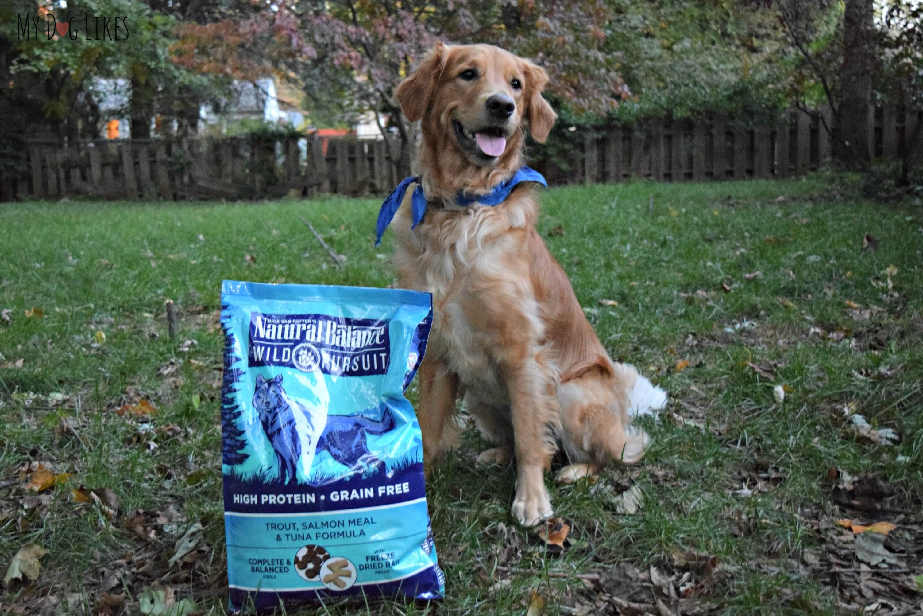 Pioneer Naturals Dog Food Website