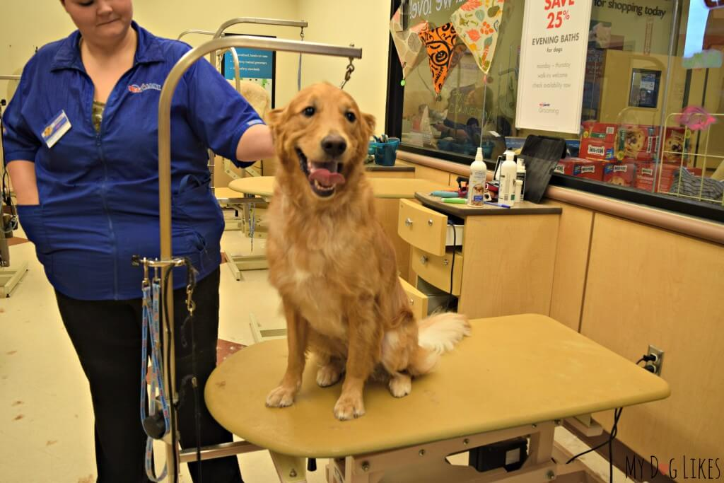 Charlie from MyDogLikes visits PetSmart Dog Grooming to weigh in on their skills, services and convenience!