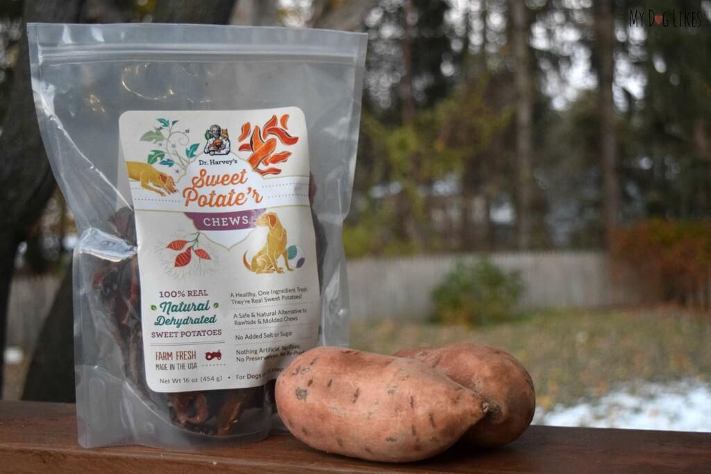 MyDogLikes reviews Dr. Harvey's Sweet Potate'r Chews!