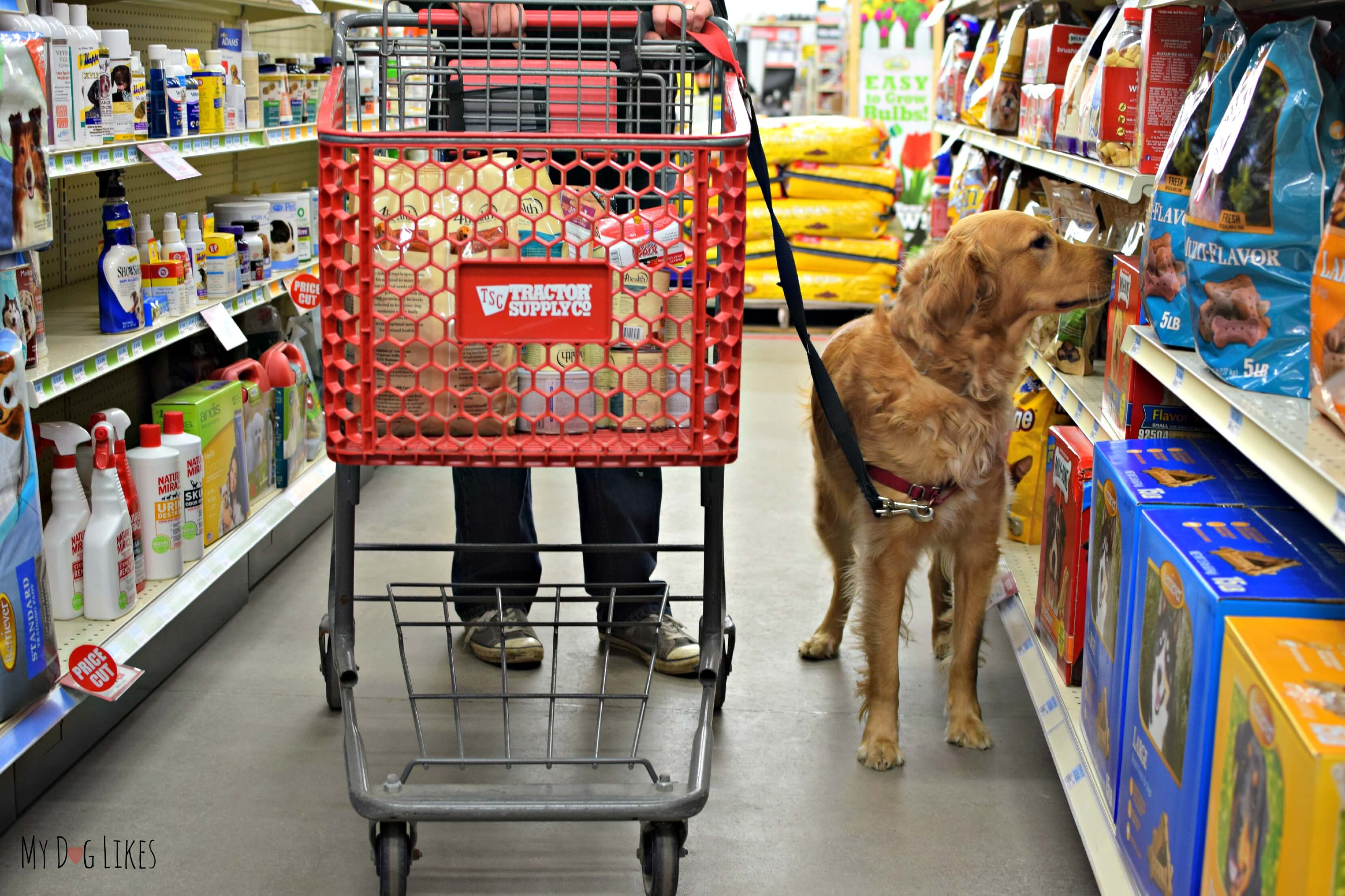 Wholesome Dog Food Tractor Supply