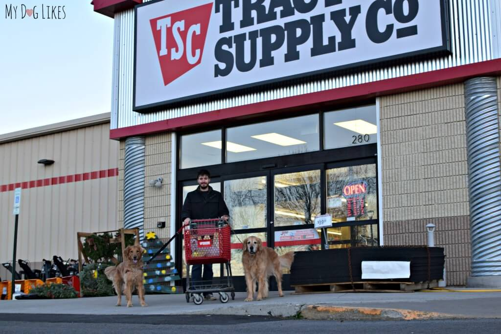 Shopping with the dogs at our local Tractor Supply store