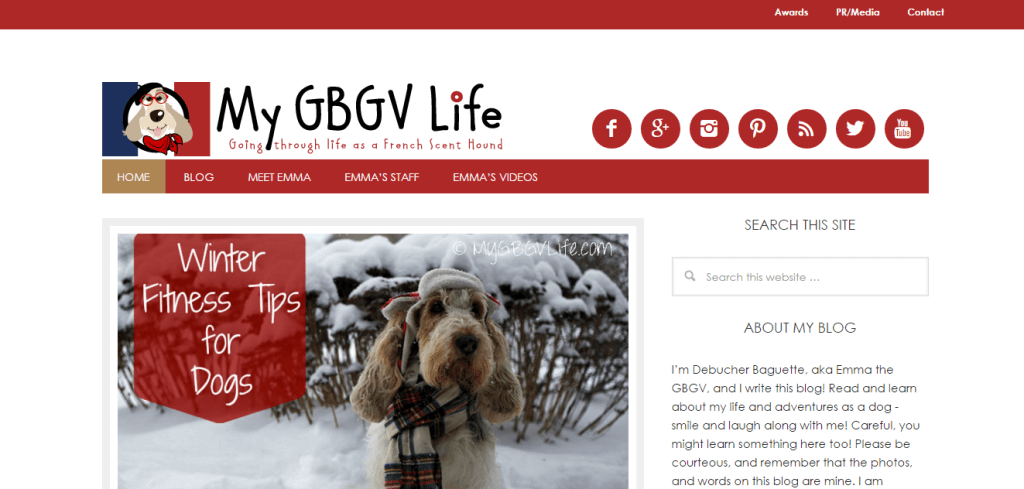 Screenshot from MyGBGVLife - one of our favorite dog blogs!