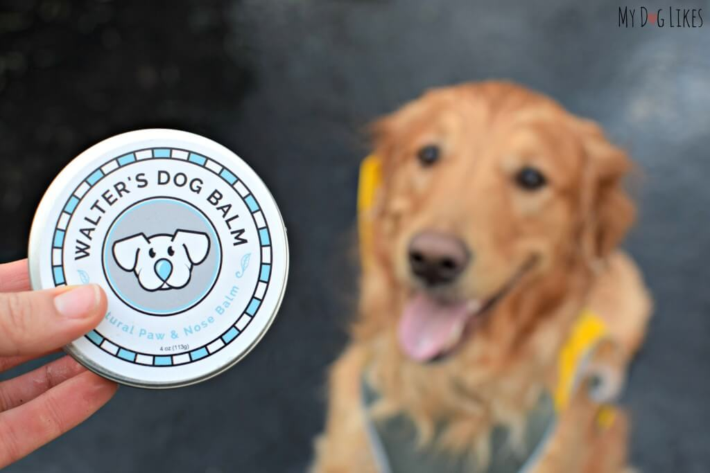 Walter's Dog Balm Coupon Code