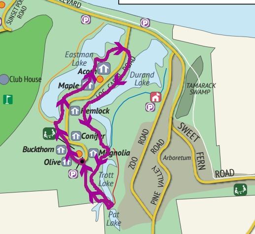 Mapping our route along the various trails of Durand Eastman Park