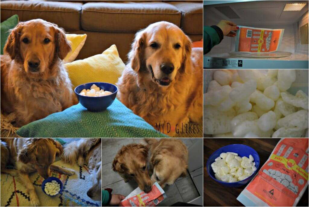 pupcorn collage