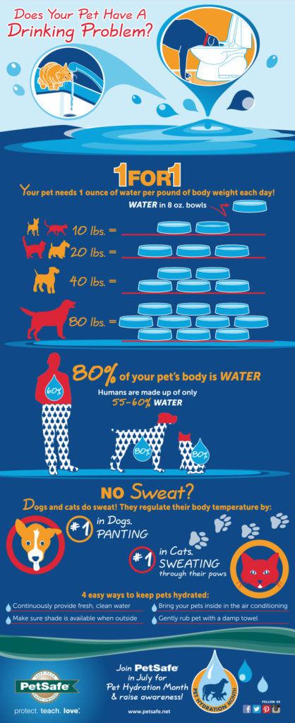 PetSafe Dog Hydration Infographic