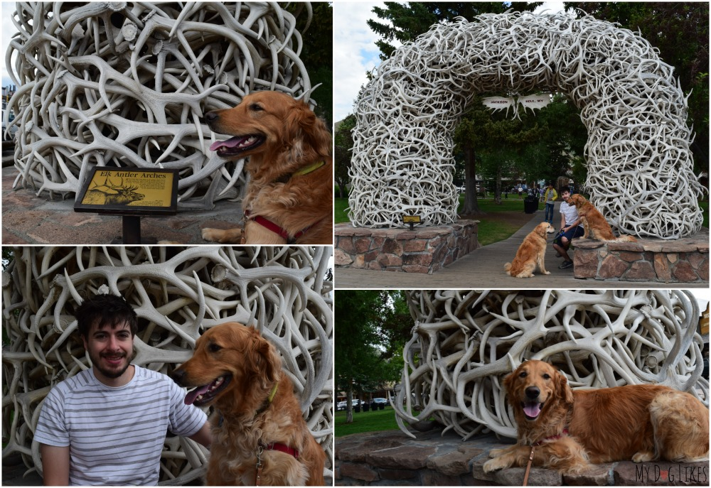 Posing by the Jackson Hole Elk Antler Arches. These are naturally shed and collected by local scouting groups.