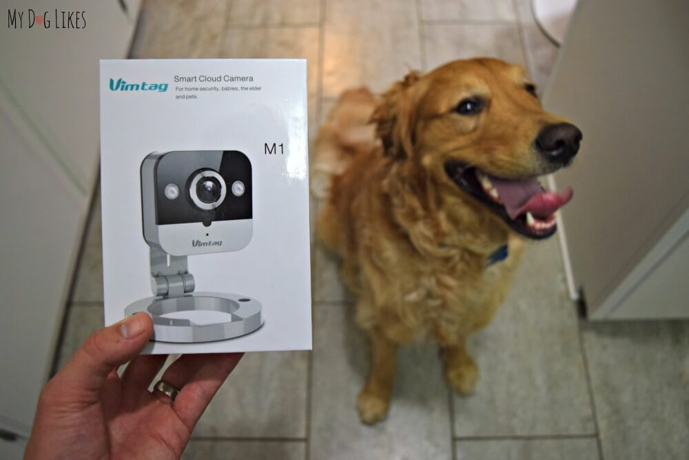 Vimtag M1 Mini Cube Review - Perfect for checking in on pets while you aren't at home!
