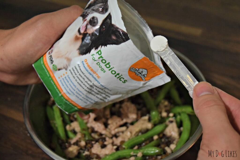 Adding some probiotic supplement to our dogs food.