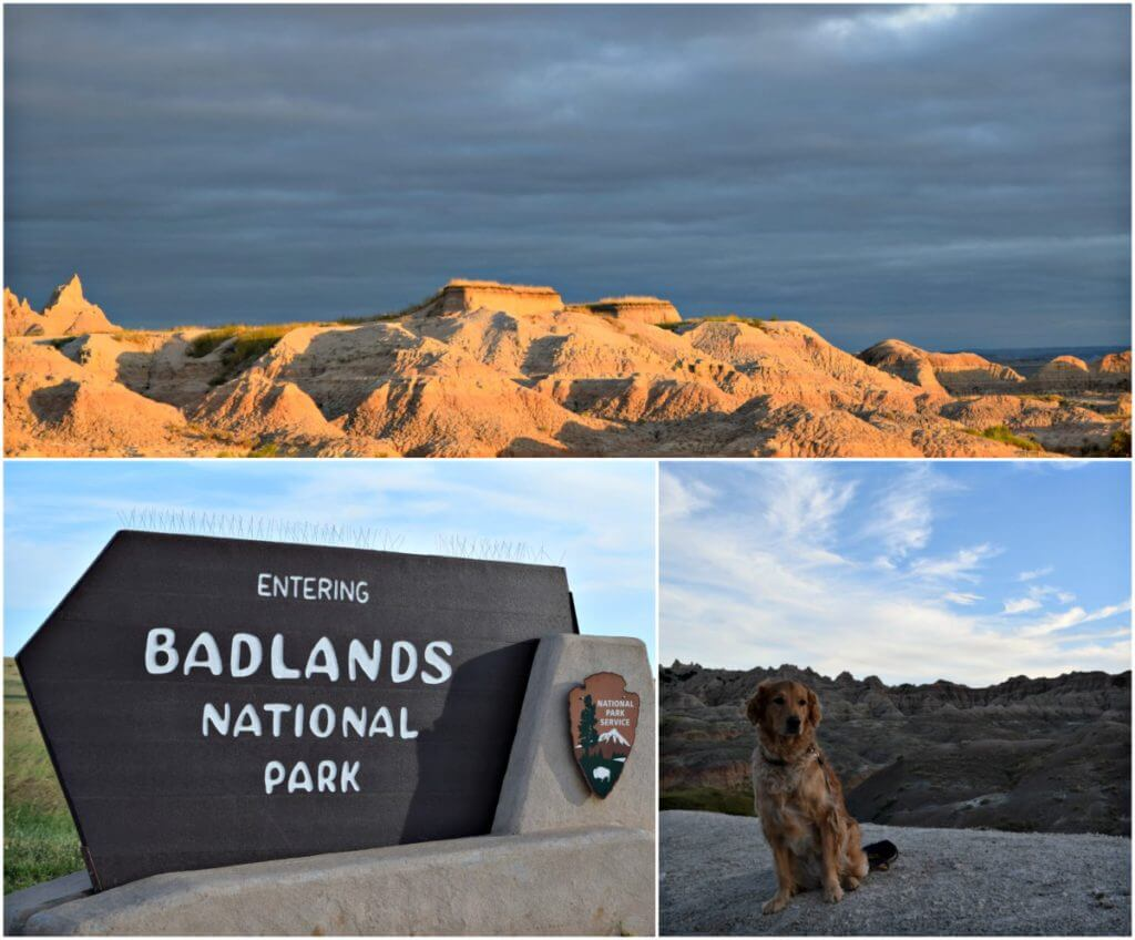 Visiting Badlands National Park with dogs!