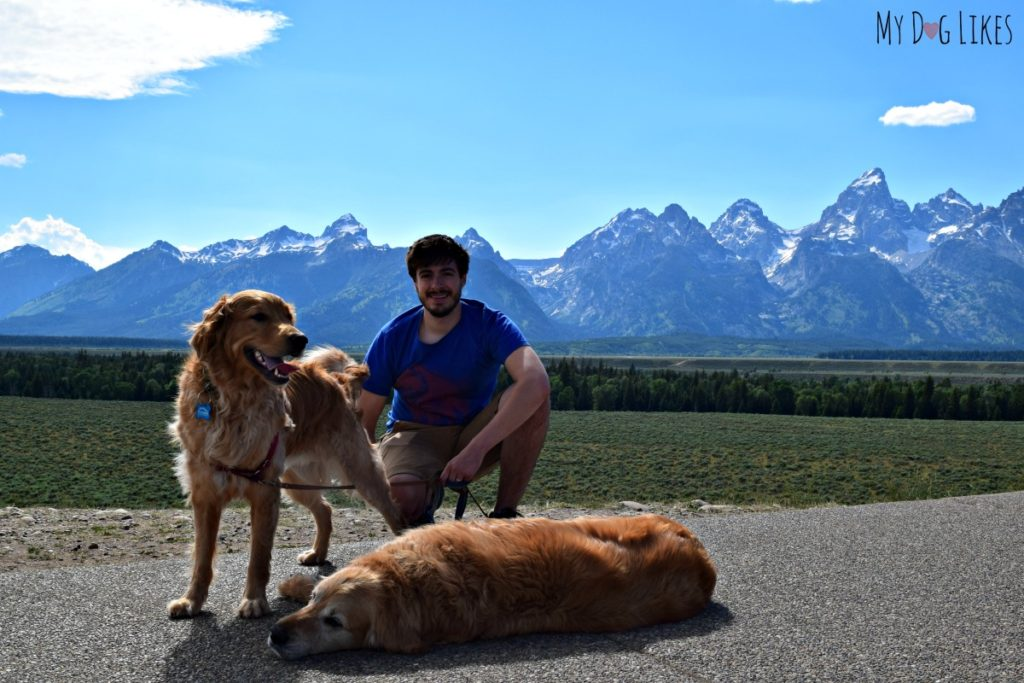 Visiting Grand Teton National Park With Dogs