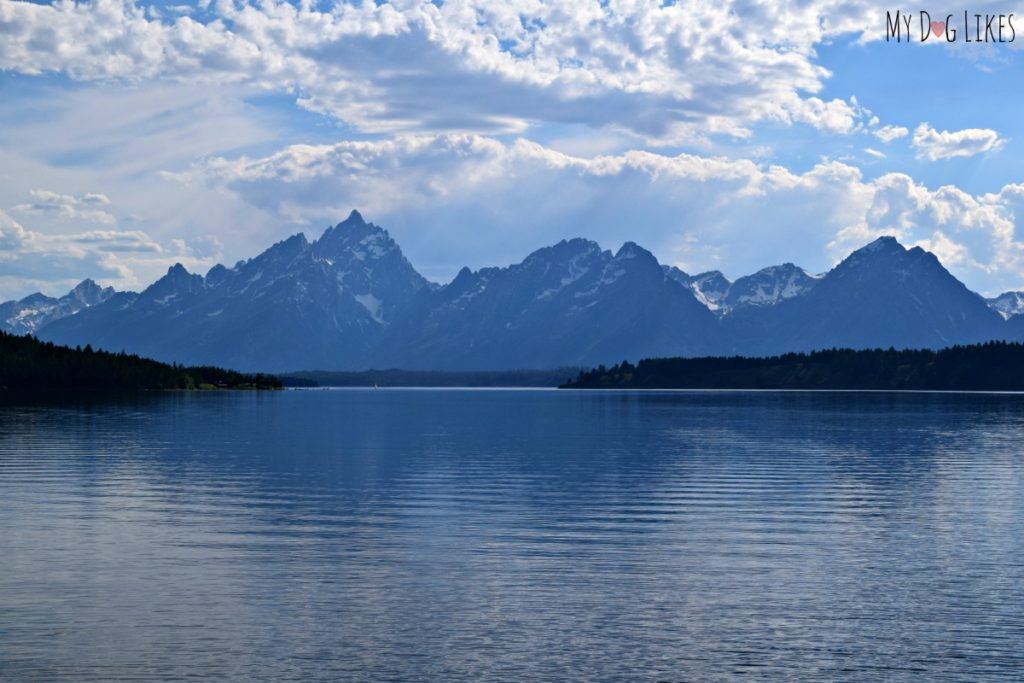 Visiting grand teton national park with dogs for Jackson lake fishing