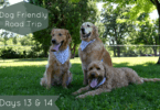 Dog Friendly Road Trip Days 13 & 14 - Headed Back Home