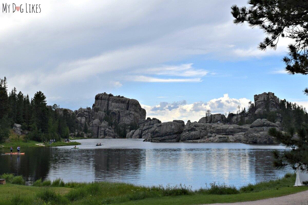 Sylvan Lake Dog Park