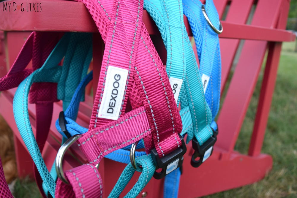 DEXDOG Harnesses are available in several vibrant colors including turquoise, pink, purple, green and blue..