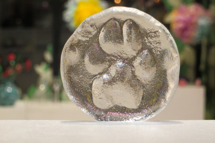 hot-paws-glass