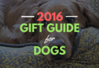 Looking for some great gifts for dogs? Don't miss this HUGE list of our top dog products of the year.