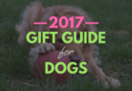 MyDogLikes Ultimate List of Gifts for Dogs - 2017
