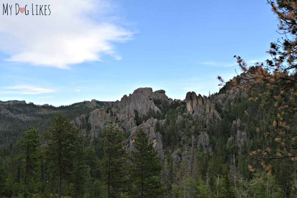 Gorgeous granite spires from the Needles Highway