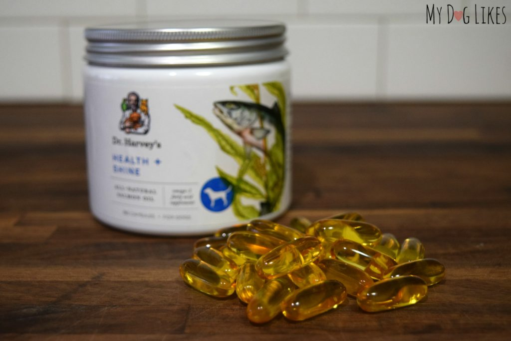 Dr harvey 39 s health and shine review taking the stink for Fish oil for dog allergies