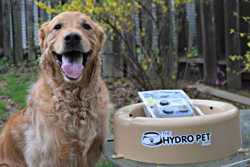 MyDogLikes reviews the Hydropet water bowl