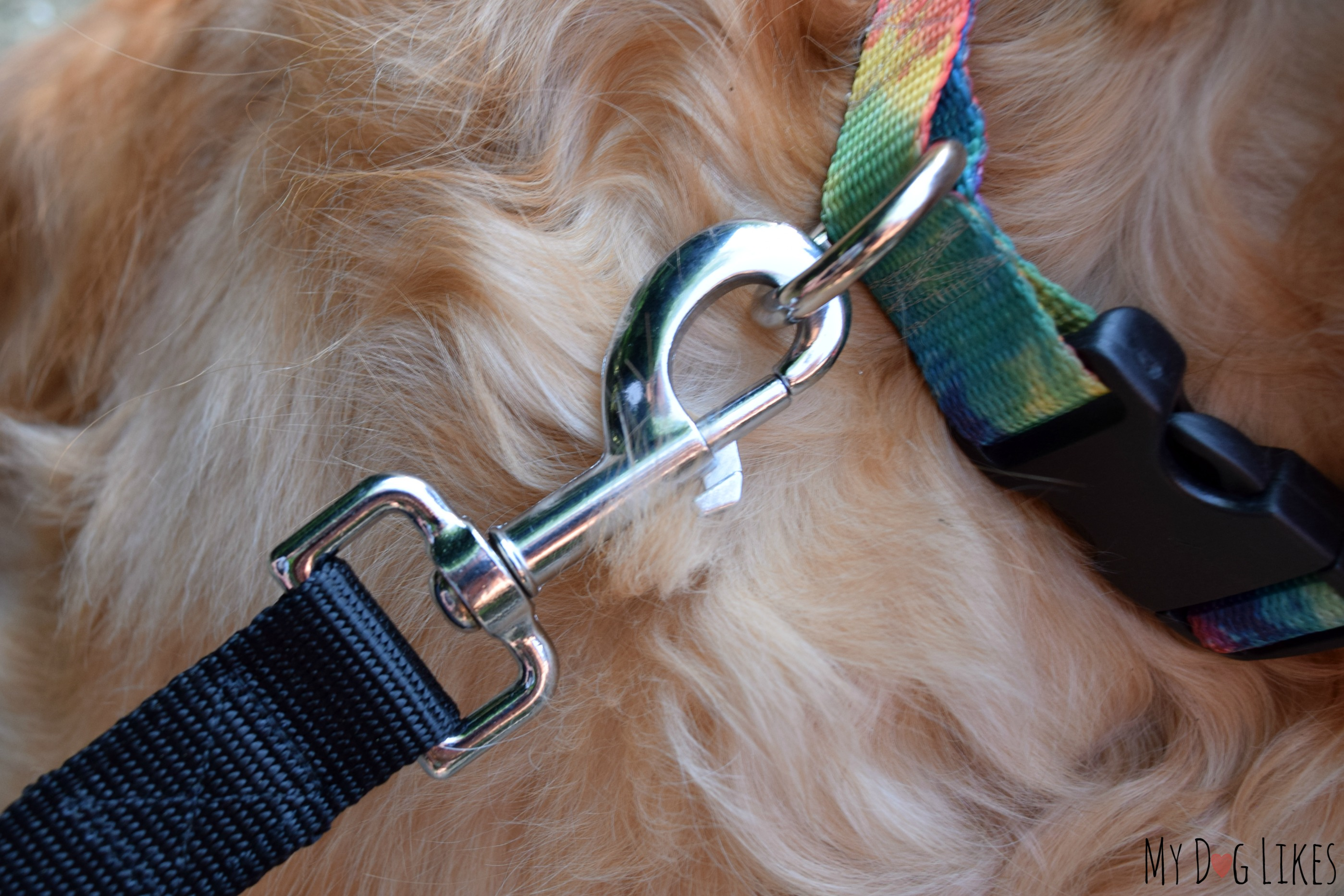 Staying In Control With A 2 Handle Dog Leash From Lucky Amp Co