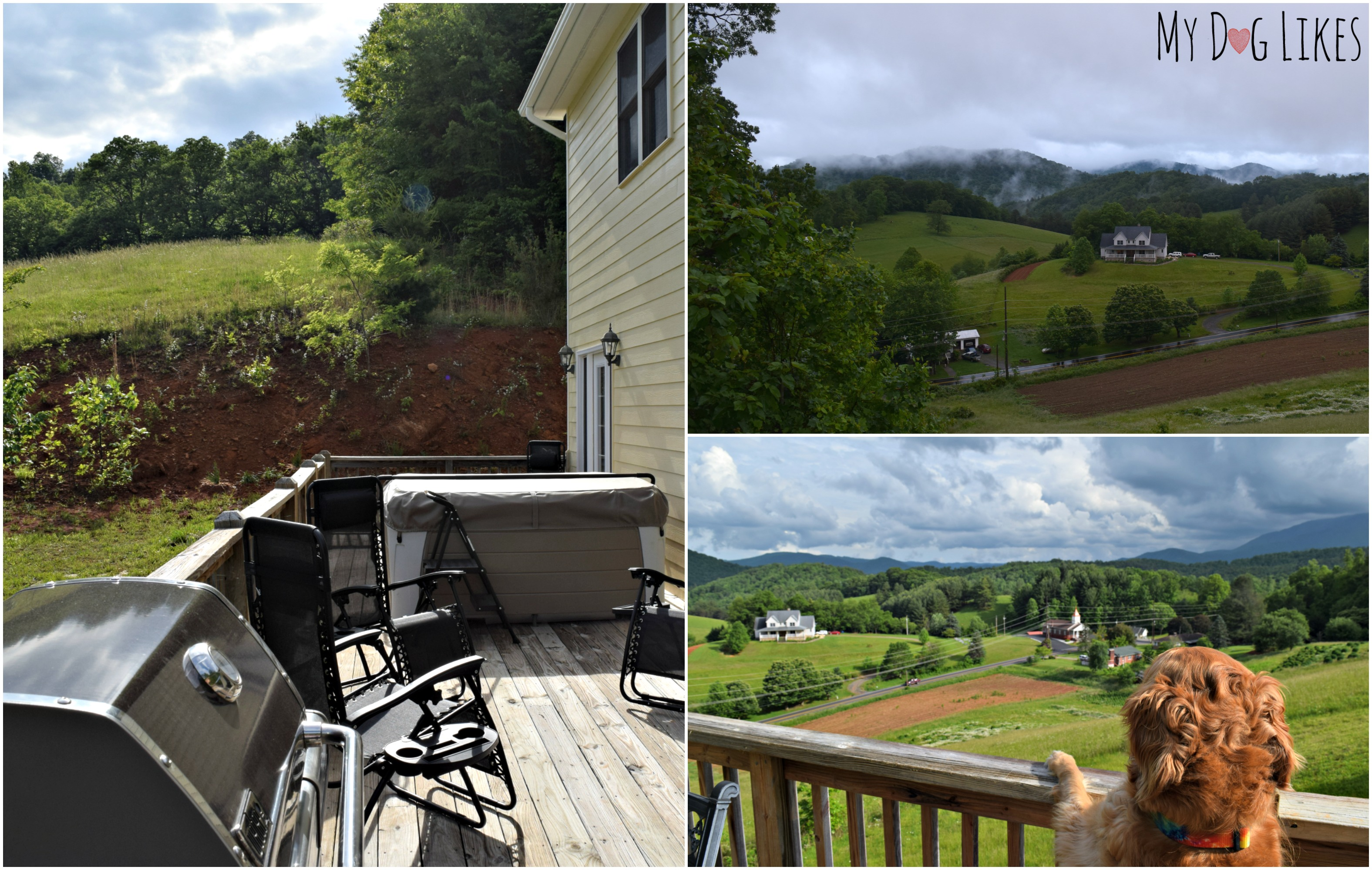 Road Trip Day 9: Glamping with Pets Near Asheville, NC