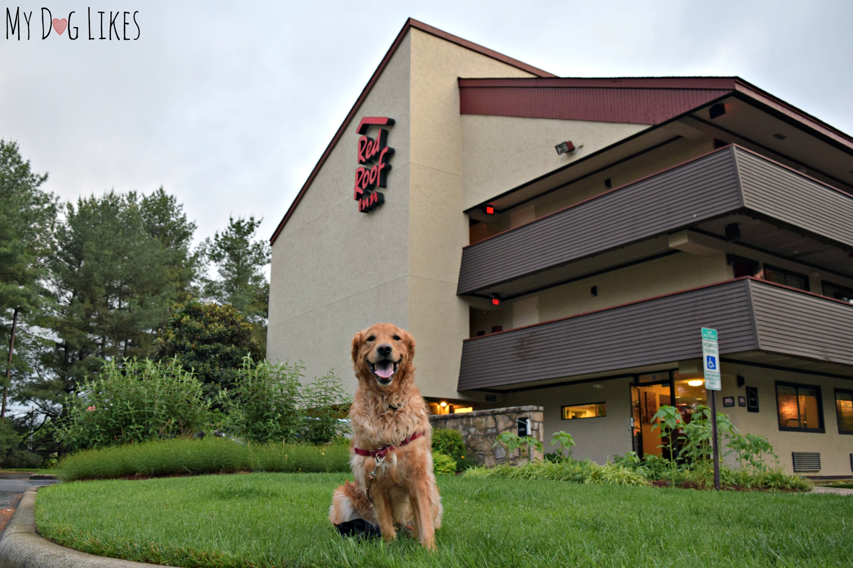 ... Staying At The Red Roof Inn West Asheville Location ...