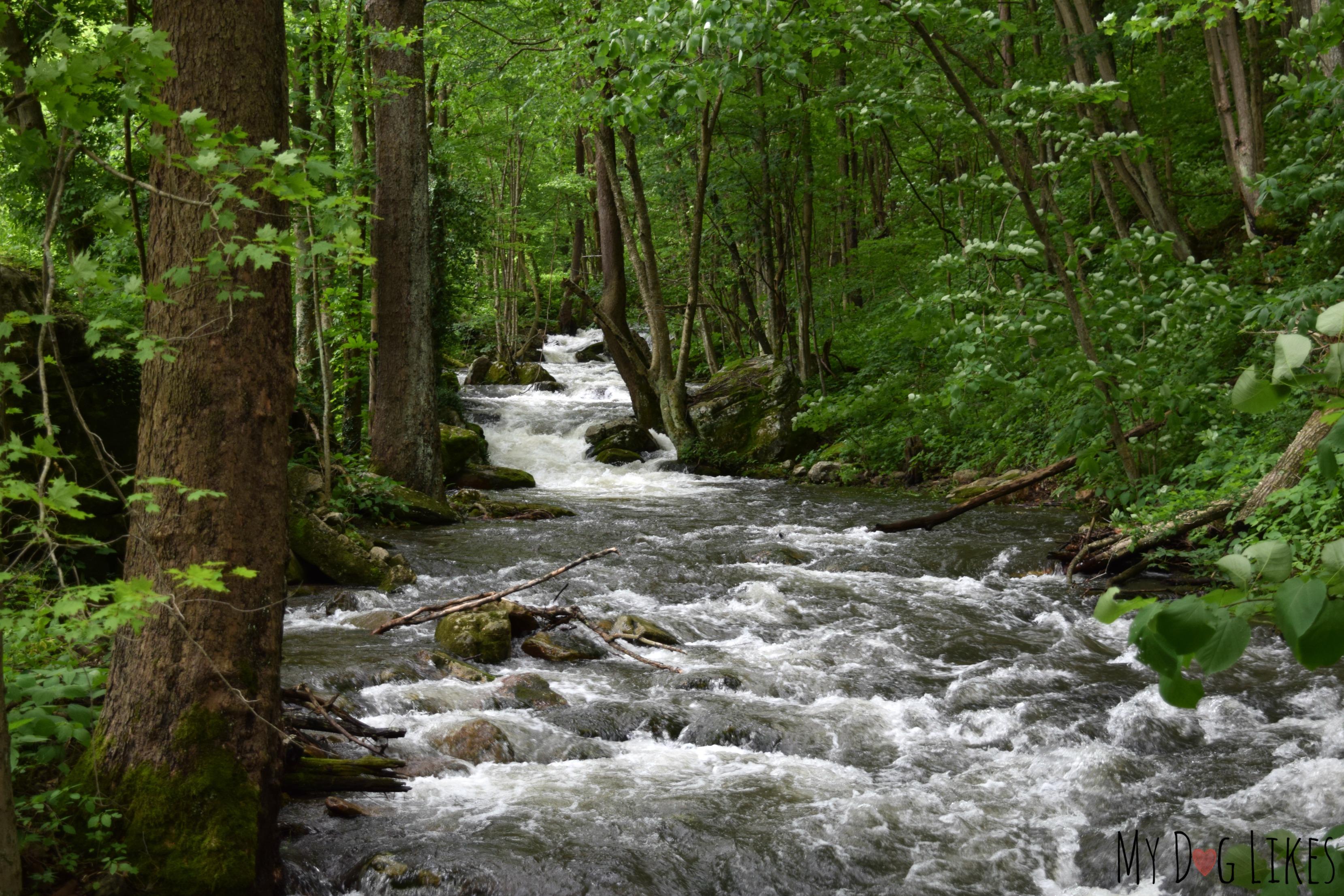 Map Mill Creek Nature Park Narrows Va