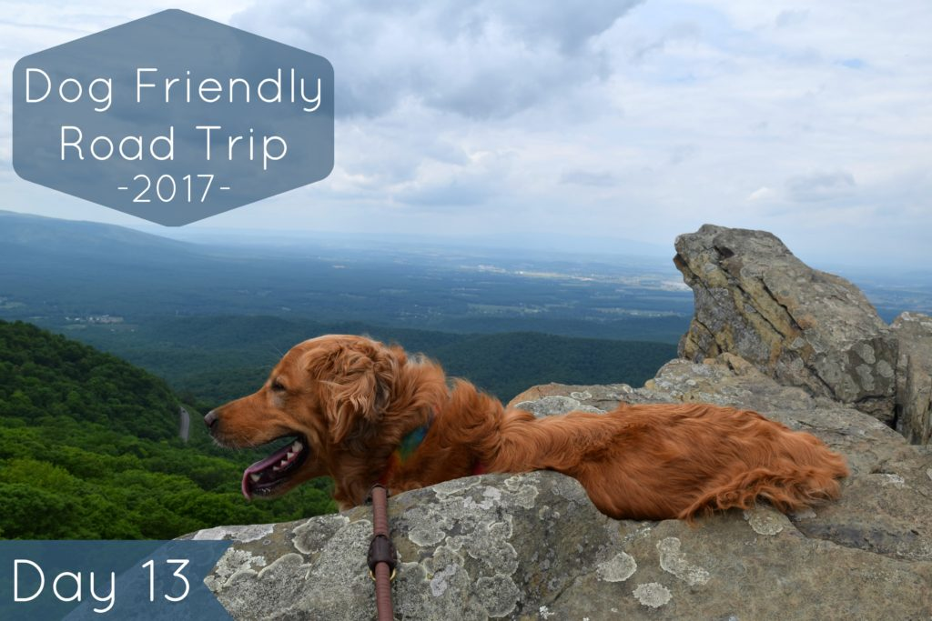 Road Trip Day 13: Soaking in Stunning Views at Humpback Rocks