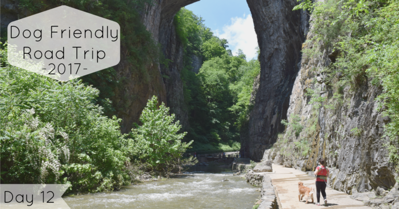 Road Trip Day 12: Visiting Virginia's Natural Bridge State Park with Dogs